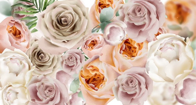 Roses watercolor background