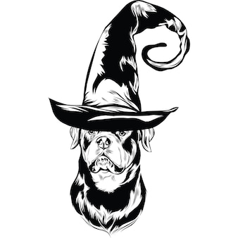 Rottweiler dog in witch hat for halloween