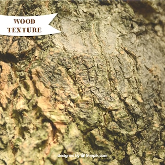 Rough texture of old wood