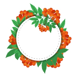 Round background branch of red rowan berries and leaves frame