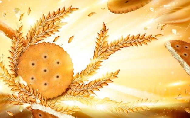 Round cracker and wheat background illustration