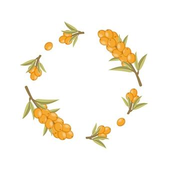 シーバックソーンの小枝で作られた丸いフレーム。写真の装飾のための花のフレーム。写真またはキャプションの下に配置します。結婚式の招待状を作る。