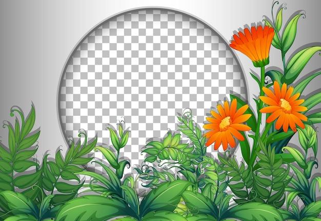 花と葉のテンプレートで透明な丸いフレーム