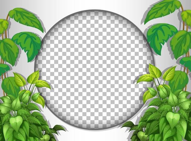 熱帯の葉のテンプレートで透明な丸いフレーム