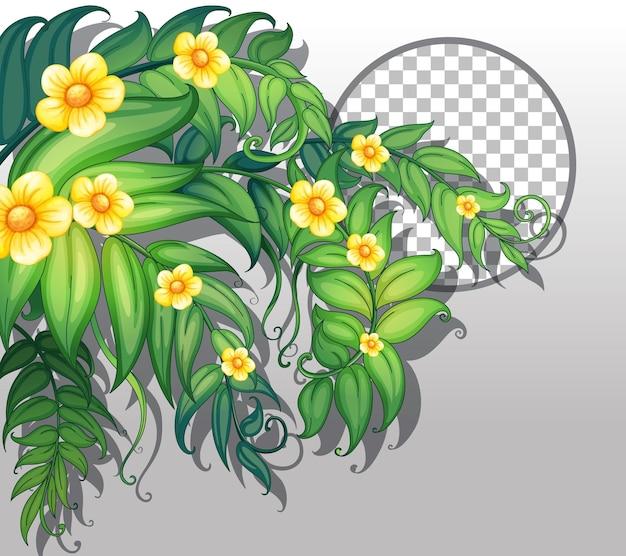 黄色い花と葉のテンプレートで透明な丸いフレーム