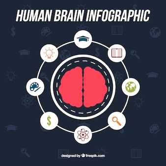 Round infographic of human brain with icons