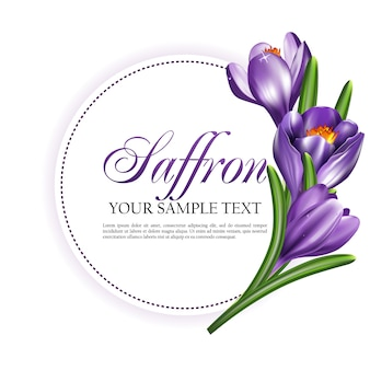 Round label card or invitation with saffron flowers