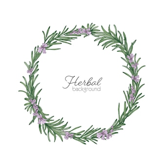 Round natural backdrop or wreath made of rosemary hand drawn on white space