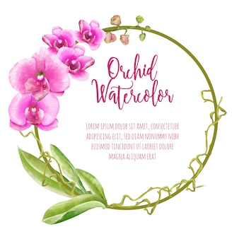 Round orchid watercolor background