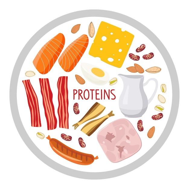 단백질 식품이 있는 원형 기호 식품 다량 영양소 건강한 일일 식단을 위한 고단백 식품