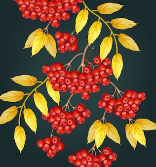 Ягоды рябины осенью