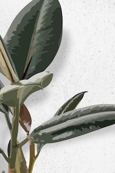 고무 식물 배경 벽지 벡터, 녹색 잎 관엽 식물