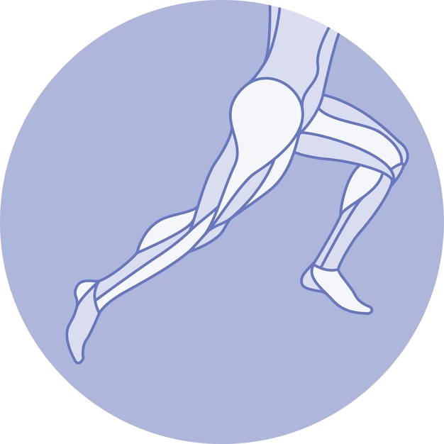 Running female anatomy figure pose with muscles