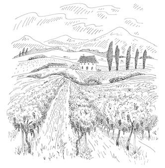 ヴィラ、ブドウ園のフィールドと丘のある田園風景。白い背景で隔離の黒のヴィンテージ彫刻。手描きデザインイラスト