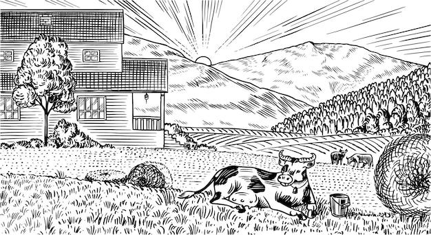 田舎の牧草地。牛、丘、農場のある村の風景。日当たりの良い風光明媚なカントリービュー。手で書いた