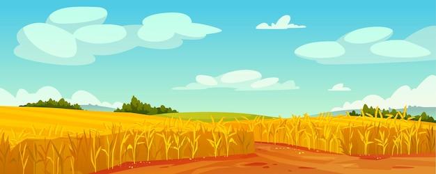 Сельский летний пейзаж поле спелой пшеницы на холмах и долинах сельский пейзаж деревья лесная панорама