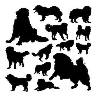 The russian bear dog silhouettes