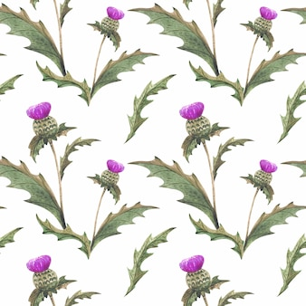 Rust thistle flower watercolor seamless pattern