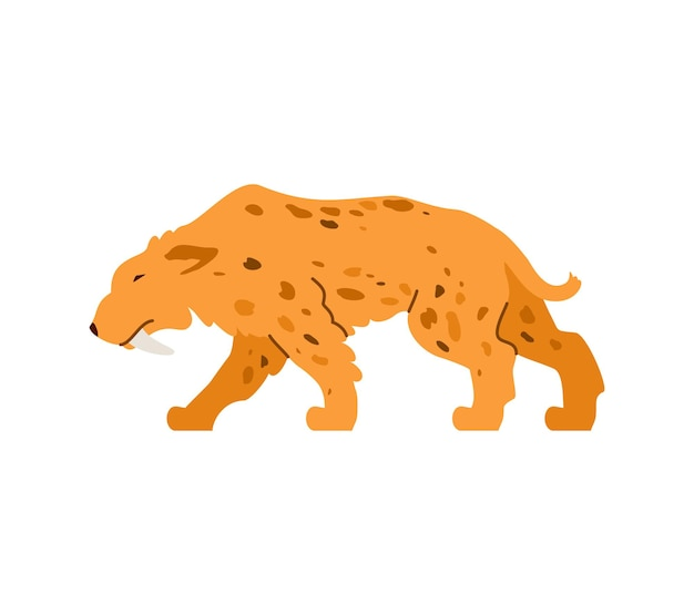 The sabertoothed tiger is a predatory wild animal of prehistoric stone age