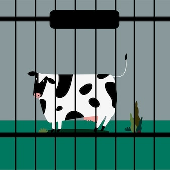 Sad livestock cow in captivity