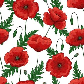 赤いポピーの花と無意味なパターン。 papaver。緑の茎と葉。