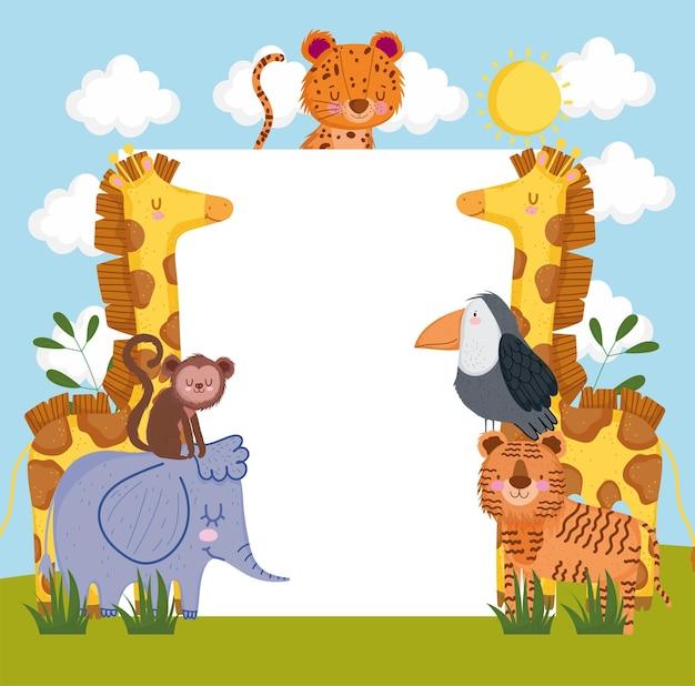 Животные сафари с плакатом