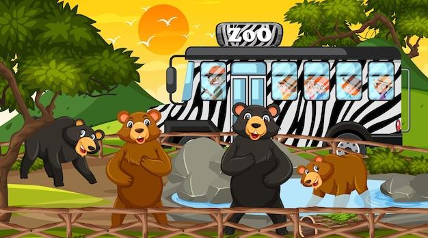 多くの子供たちがクマのグループを見ている日没時のシーンでサファリ
