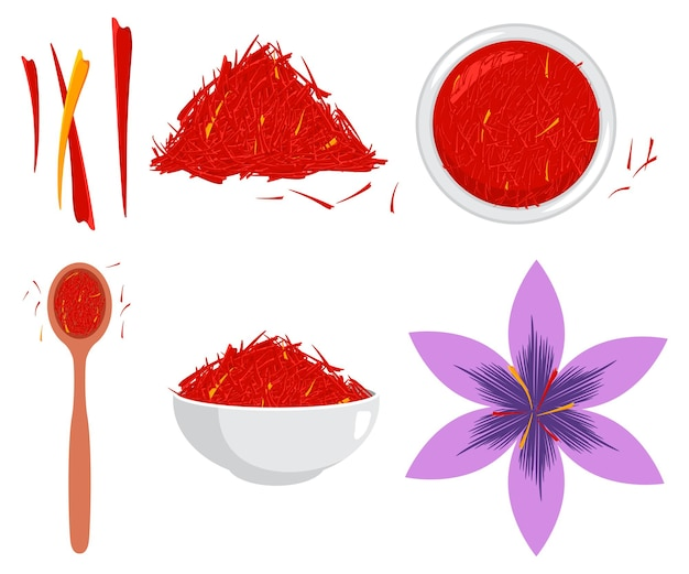 Saffron flower and spice vector cartoon set isolated on a white background.