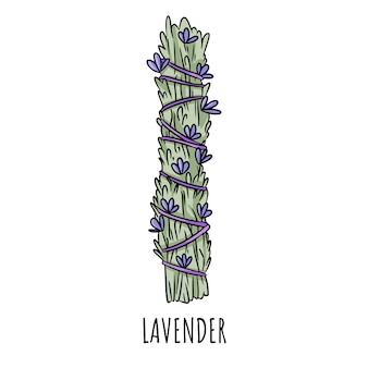 Sage smudge stick hand-drawn doodle isolated illustration. lavender herb bundle