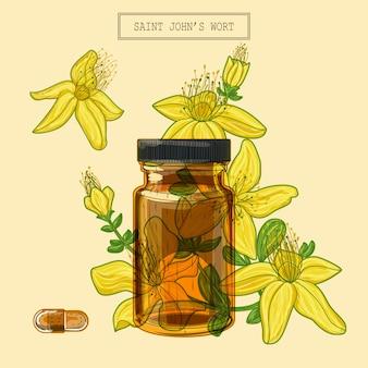 Цветы зверобоя и коричневые стеклянные флаконы и таблетки, рисованная ботаническая иллюстрация в модном современном стиле