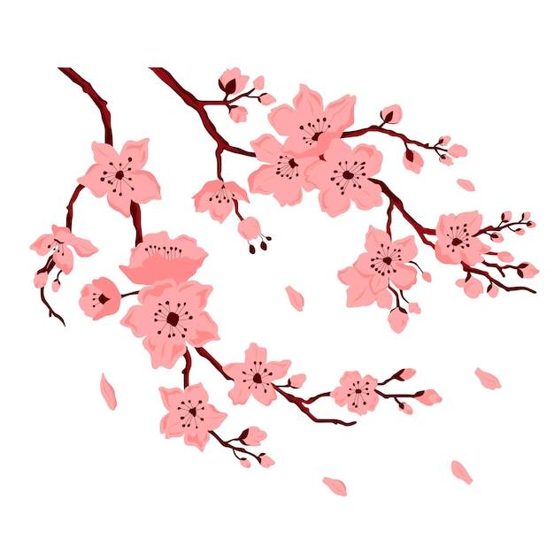 Цветение сакуры. вишневая ветвь с цветами и бутоном. лепестки падают. векторные цветные плоские иллюстрации шаржа, изолированные на белом фоне.