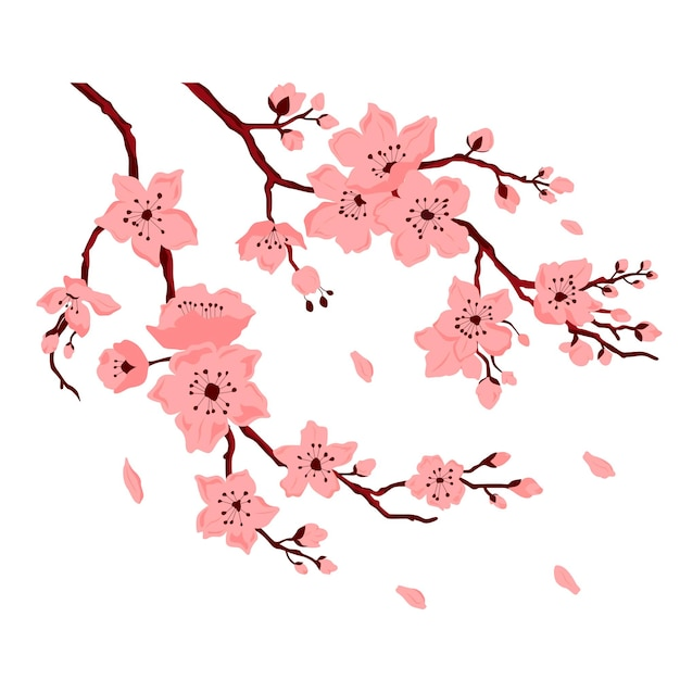 Sakura blossom. cherry branch with flowers and bud. petals falling. vector color flat cartoon illustration isolated on white background.