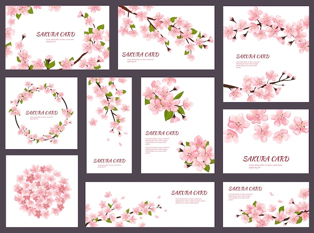 Sakura blossom cherry greeting cards with spring pink blooming flowers illustration japanese set of wedding invitation flowering template decoration isolated on white background