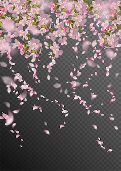Sakura branch in springtime with falling petals and blurred transparent elements