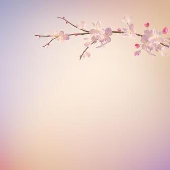 Sakura branch in springtime Premium Vector