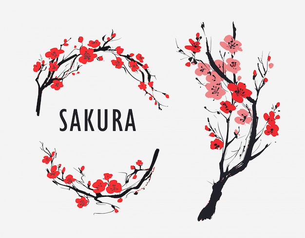 Sakura branch with flowers. vector illustration