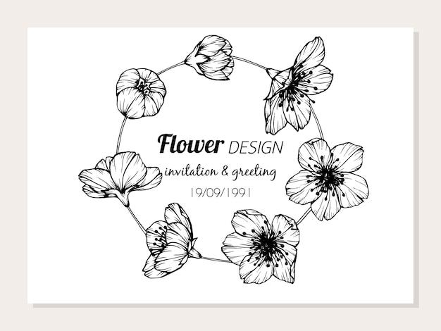 Сакура цветок кадр рисунок иллюстрации.