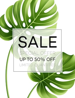 Sale banner or poster with palm leaves and jungle leaf. floral tropical summer background.
