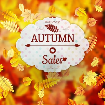 Sale with autumn leaves.