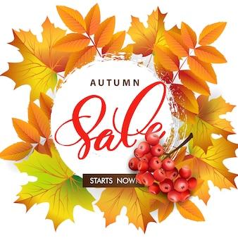 Продажа баннер с осенними листьями и ягодами рябины.