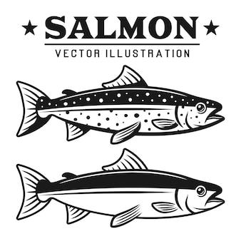 2つのスタイルの詳細なヴィンテージイラストのサーモン魚セット