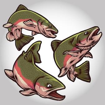 연어 물고기