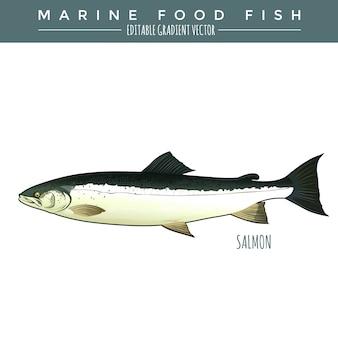 Лосось. морская пища рыба