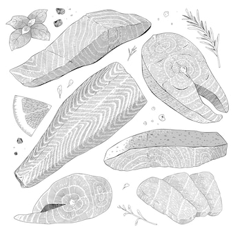 Salmon steak and fish fillet cross hatching ink illustrations isolated on white background
