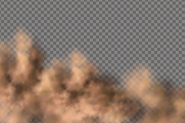 Sandstorm, a cloud of dust or sand flying. realistic
