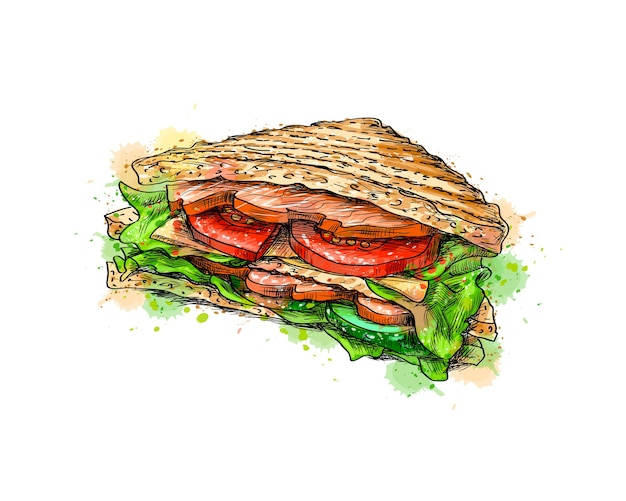 Sandwich fast food from a splash of watercolor, hand drawn sketch.  illustration of paints