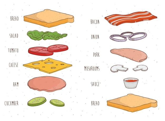材料を別々にサンドイッチします。パン、サラダ、トマト、チーズ、ソース、マッシュルーム、ベーコン、タマネギ。カラフルな手描きのベクトル図です。