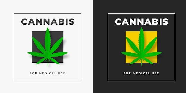Sativa 및 indica 대마초 벡터 로고 템플릿은 흰색과 검정색 배경에 제곱됩니다. 의료 마리화나 엠블럼 디자인 cbd 및 thc. 잔디의 녹색 잎 그래픽 레이블입니다.