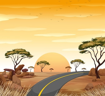 Savanna scene with empty road at sunset