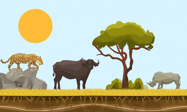 Savannah animals in africa vector landscape with baobab  and under earth surface layer, bull, gepard and rhino. savannah animals illustration. wildlife of africa.